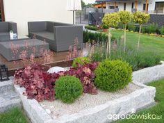 Ogród Tosi - strona 242 - Forum ogrodnicze - Ogrodowisko Boho Room, Backyard, Patio, Raised Garden Beds, Garden Inspiration, Outdoor Decor, Flowers, Plants, Garden