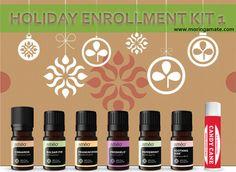 Zija Holiday Limited Edition Kits  - Zija Ameo Holiday Enrollment Kit 1