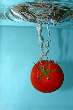 Tomato - vaguely reminiscent of the inspiration for my logo. neat!