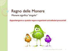 """Monere significa """"singolo"""">"""