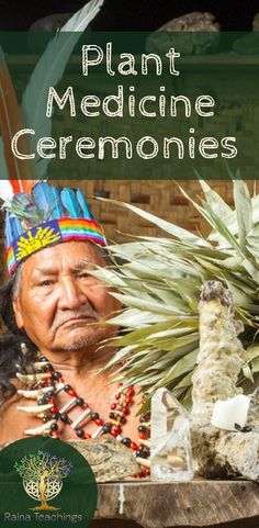 Tips and advice on seeking out plant medicine ceremonies Emotional Healing, Self Healing, Healing Herbs, Holistic Healing, Medicinal Plants, Spiritual Enlightenment, Spiritual Awakening, Spiritual Path, Spiritual Growth