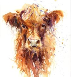 Highland Cow limited edition print No.3813 Description: Contemporary PRINT of my original watercolour painting on 320gm acid free archival quality fine art p