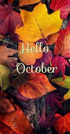 Best Fall wallpaper ideas on Pinterest Iphone wallpaper fall