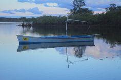 Lake - Near Noosa, QLD Australia