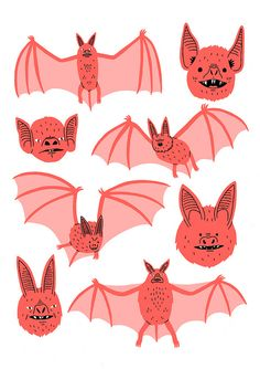 Coral colored bats illustration by Jack Teagle