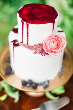 Raspberry wedding cake   Anastasia Strate Photography   see more on: http://burnettsboards.com/2015/12/berry-hued-forested-mountain-wedding/