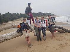Wild-South Coast Walk on the South Coast of KwaZulu-Natal. Hiking in South Africa Hiking Trips, Kwazulu Natal, Walk On, The Great Outdoors, Wilderness, South Africa, Trail, Wildlife, Coast