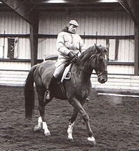Exercises for a Horse Heavy on the Forehand