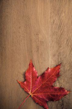 wood effect Wood Effect Porcelain Tiles, The Doors, Natural Wood, Porcelain Tiles, Ideas