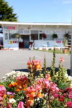 Quarryfields Holiday Park, Crantock nr Newquay - £7 per adult, £5 per child, £1.50 per dog
