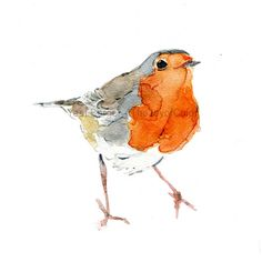 Hey, I found this really awesome Etsy listing at https://www.etsy.com/listing/209018781/cute-robin-art-print-of-watercolor