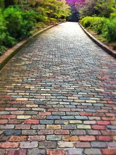 out the front on Pinterest | Brick Path, Brick Walkway and Brick ...