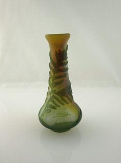 vase fougere