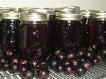 Free Muscadines & A Muscadine Jelly Recipe