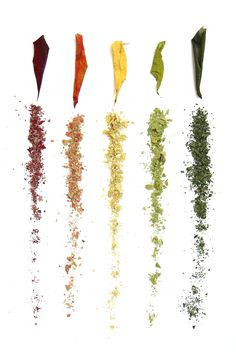 dried and crushed sumac leaves (mary jo hoffman)