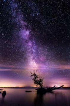 Night Sky Astronomy Wallpaper - The Space Beautiful Sky, Beautiful World, Beautiful Places, Pretty Sky, Pretty Green, Beautiful Scenery, Beautiful Landscapes, Ciel Nocturne, Sky Full Of Stars
