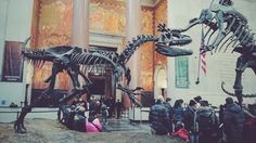 Under the ancient creatures #nyc #museum #vsco #winter