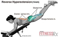 Reverse Hyperextensions - Tone Your Glutes, Hamstrings and Lower Back. I love these. Use the bands for intensity