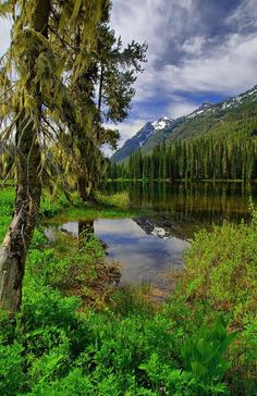 """My novel """"Promise"""" leads to places like this . Fish Lake, Wenatchee National Forest, photo by desiree The Places Youll Go, Places To See, Beautiful World, Beautiful Places, Beautiful Scenery, Wenatchee National Forest, Washington State, Washington Hiking, Beautiful Landscapes"""