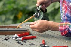 Alan Titchmarsh demonstrates how to oil and sharpen secateurs using a sharpening stone, in the this short No Fuss video from BBC Gardeners' World Magazine. Garden Tools, Garden Ideas, Growing Flowers, Gardening Tips, Cleaning, Landscaping, Advice, Allotment, Pruning Shears