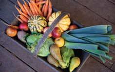 Choosing seasonal produce is the best way to enjoy foods at their peak of freshness and flavor. It's also a good way lower your environmental impact and support local agriculture.