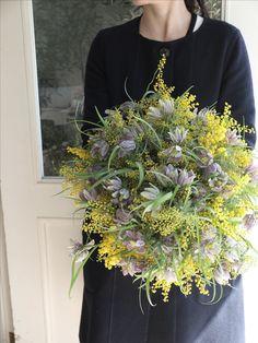 mimosa and fritillaria