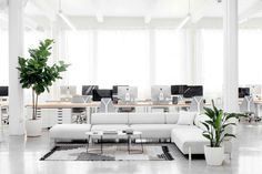 The Open Office: Everlane's New SF Quarters in a Converted Laundry - Remodelista Everlane's lofty white office in SF in a laundry building; Open Office, White Office, Office 2020, Office Lounge, Office Interior Design, Office Interiors, Corporate Interiors, Interior Styling, Office Workspace
