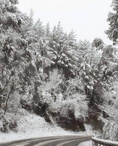 YOLOLOS: NIEVE, NIEVE Y MÁS NIEVE http://yololos.blogspot.com.es/2015/02/nieve-nieve-y-mas-nieve.html