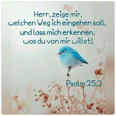 Psalm 25,2