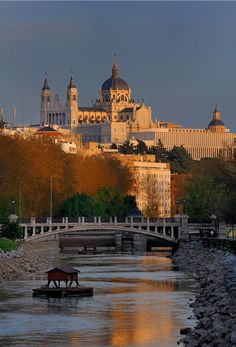 Almudena Cathedral - Madrid, Spain (by ces@r_ )