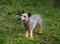 Naald vilten hond - blauwe Heeler/Australian Cattle dog