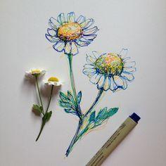 quick scribble