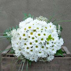Un ramo de flores sencillo y elegante de margaritas y paniculatas, envuelto por hierba de oso.