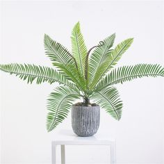 Purchase Artificial Plant Sago Cycas Tree Bonsai Wedding Party Garden Desktop Decor from Bluelans on OpenSky. Share and compare all Home. Big Indoor Plants, Fake Plants Decor, Indoor Planters, Plant Decor, Potted Plants, Cactus Plants, Palm Plants, Artificial Palm Leaves, Cheap Artificial Plants