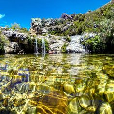 rivers of western cape - Google Search Xhosa, Rivers, South Africa, Westerns, Landscapes, African, Google Search, Sweet, Water