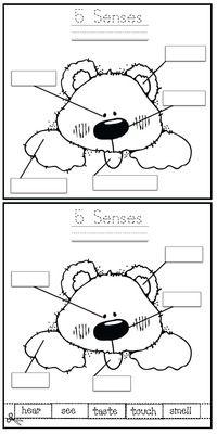 Mr. Potato Head 5 Senses activity. Preschool or