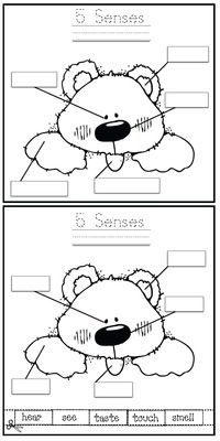 "5 Senses Activities: ""Label the bear"" 5 senses worksheets."