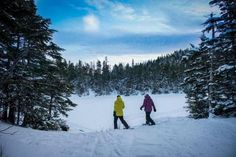 New England's lofty peaks offer wide-ranging views