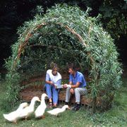 Easy-to-make willow garden seatBranch out and add something unique to your yard or garden.
