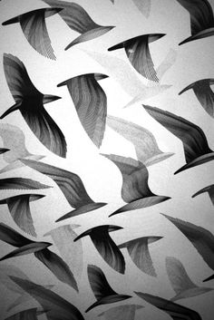 - Birds - Migration A number of exquisite bird prints by UK-based Kai and Sunny. The bottom image is from a print entitled Migration East for the Ghosts of Gone Birds show in which of proceeds from sales of the print are being donated to charity. Textures Patterns, Print Patterns, Bird Patterns, Geometric Patterns, Vogel Illustration, Pattern Illustration, Graphic Art, Graphic Design, Bird Graphic