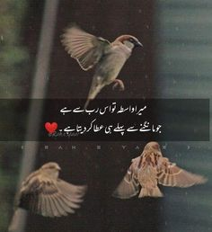 Urdu Poetry 2 Lines, Poetry Quotes In Urdu, Love Song Quotes, True Feelings Quotes, Mood Quotes, Best Islamic Quotes, Islamic Phrases, Islamic Messages, Islamic Inspirational Quotes
