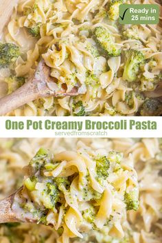 This One Pot Creamy Broccoli Pasta is a cheesy, creamy, dreamy dinner that's packed full of broccoli, and on the table in just 25 minutes! #onepot #broccoli #creamypasta #recipe #easy #pastarecipes Broccoli Pasta, Creamy Pasta, Easy Pasta Recipes, Healthy Recipes, Instant Pot Pasta Recipe, Vegetarian Entrees, One Pan Meals, Dinner, Family Meals