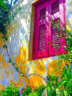 Bright fuschia pink shutters and yellow / white stucco walls - colorful