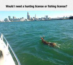 A Hunter's Dilemma