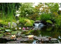 Highline SeaTac Botanical Garden - Attractions - Seattle Southside