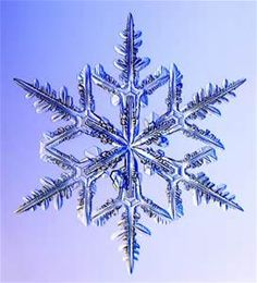 Real Snowflake Snow Crystals - Bing images