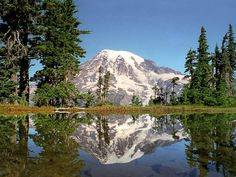 Mt. Rainier National Park (Washington)