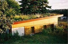 Green roof garage. Love.