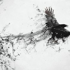 Drawn Crow ink splatter 10 - 1920 X 1200 Tattoos Motive, Muster Tattoos, Body Art Tattoos, Cool Tattoos, Tatoos, Ear Tattoos, Crow Art, Bird Art, Corvo Tattoo