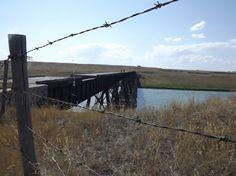 Bow River bridge Cecil